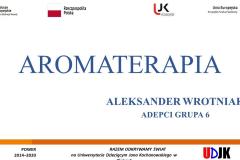 Slajd tytułowy prezentacji Aleksandra Wrotniaka